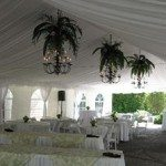 30 x 70 Frame Tent with Liner and Chandeliers