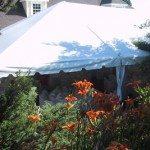 30 x 40 Frame Tent