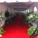 10 Wide Walkway Tent with Liner and Side Pole Drapes
